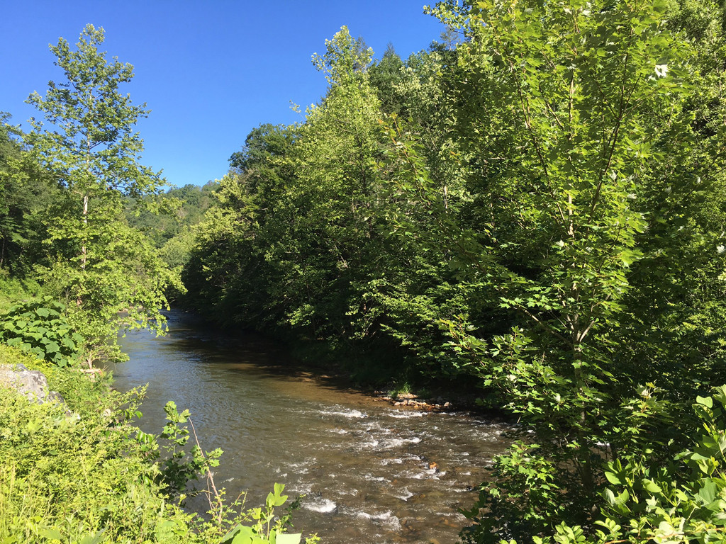 Image 10 for None Us 25 70 Highway in Hot Springs, North Carolina 28743 - MLS# 3185553