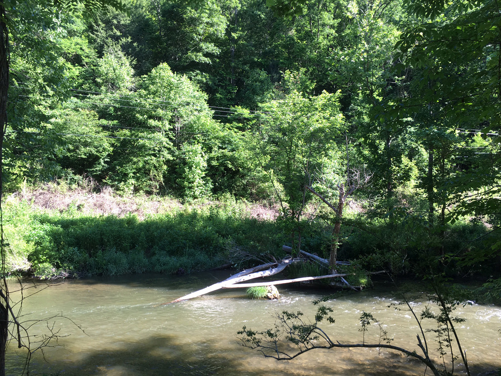 Image 11 for None Us 25 70 Highway in Hot Springs, North Carolina 28743 - MLS# 3185553