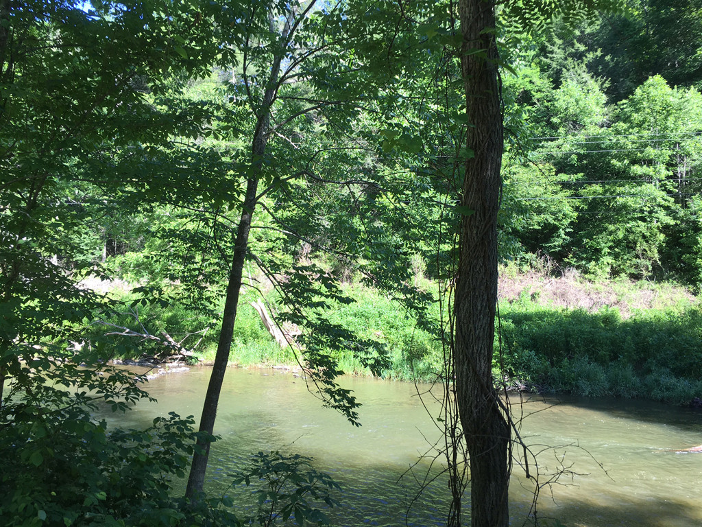 Image 12 for None Us 25 70 Highway in Hot Springs, North Carolina 28743 - MLS# 3185553