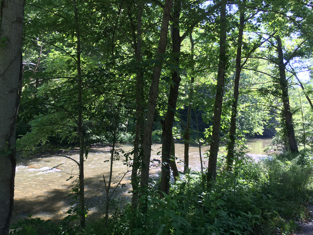Image 14 for None Us 25 70 Highway in Hot Springs, North Carolina 28743 - MLS# 3185553