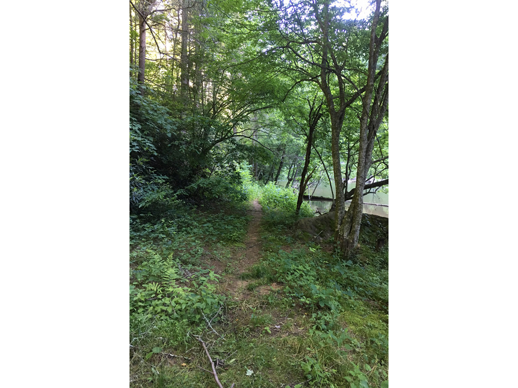 Image 15 for None Us 25 70 Highway in Hot Springs, North Carolina 28743 - MLS# 3185553