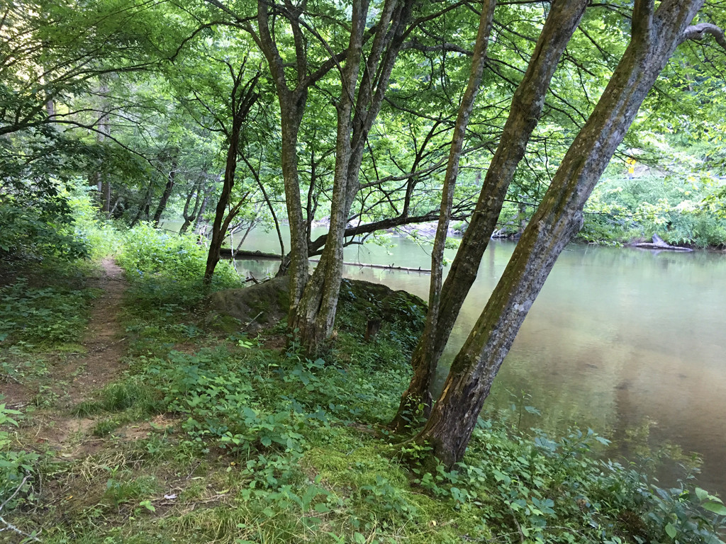 Image 3 for None Us 25 70 Highway in Hot Springs, North Carolina 28743 - MLS# 3185553