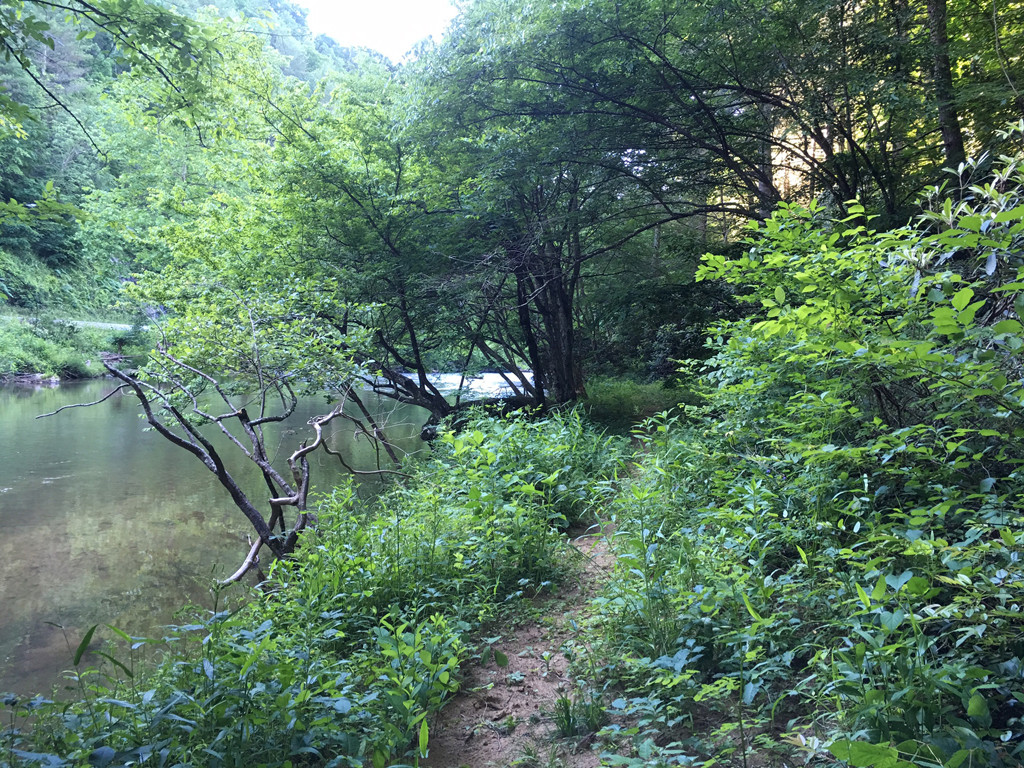 Image 4 for None Us 25 70 Highway in Hot Springs, North Carolina 28743 - MLS# 3185553