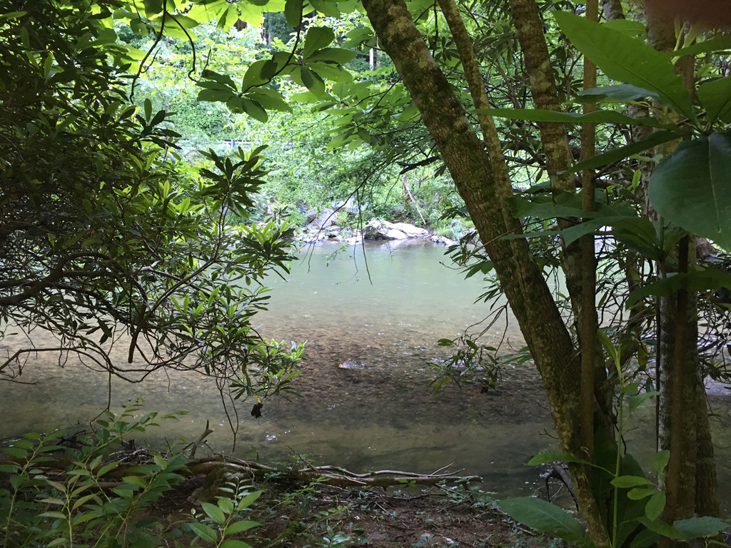 Image 7 for None Us 25 70 Highway in Hot Springs, North Carolina 28743 - MLS# 3185553