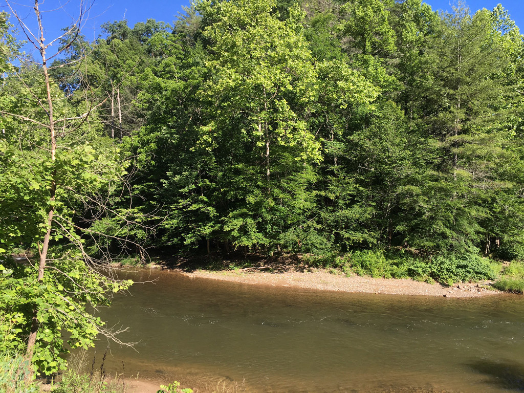 Image 9 for None Us 25 70 Highway in Hot Springs, North Carolina 28743 - MLS# 3185553