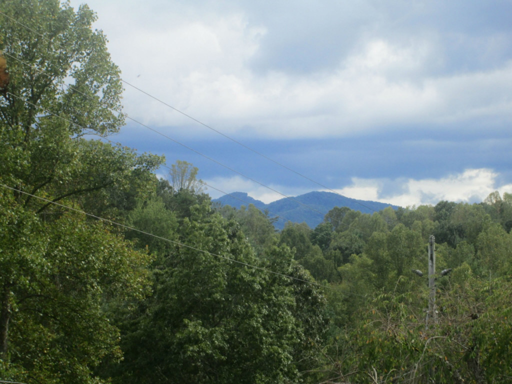 View from within the Subdivision, but not from the lot