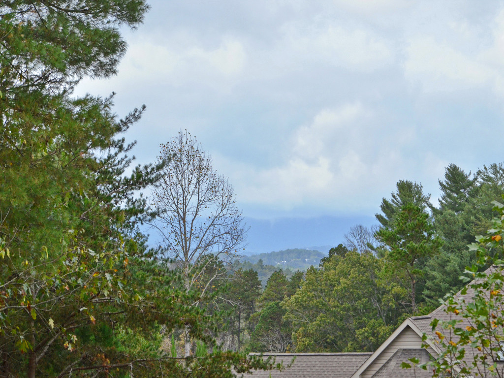81  Red Maple Drive, Weaverville, NC - USA (photo 2)
