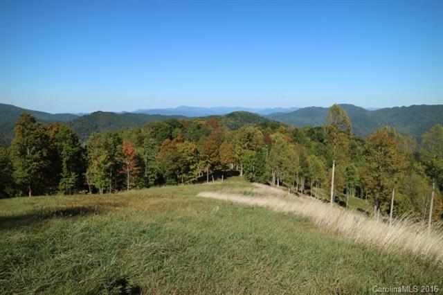 Image 1 for 00 Meadow Fork Road in Hot Springs, North Carolina 28743 - MLS# 3221579