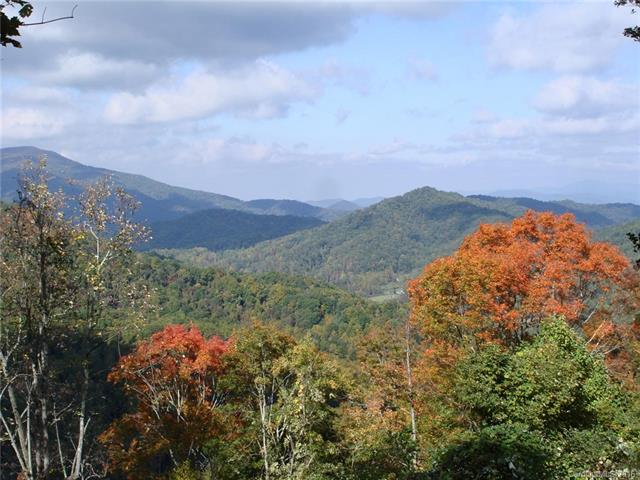 Image 3 for 00 Meadow Fork Road in Hot Springs, North Carolina 28743 - MLS# 3221579