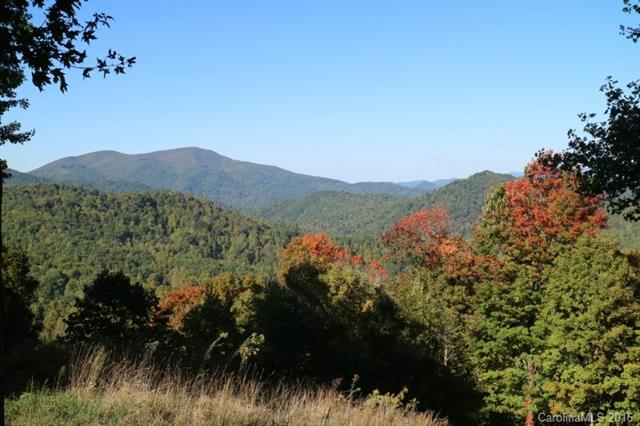 Image 6 for 00 Meadow Fork Road in Hot Springs, North Carolina 28743 - MLS# 3221579