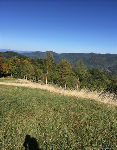 Image 9 for 00 Meadow Fork Road in Hot Springs, North Carolina 28743 - MLS# 3221579