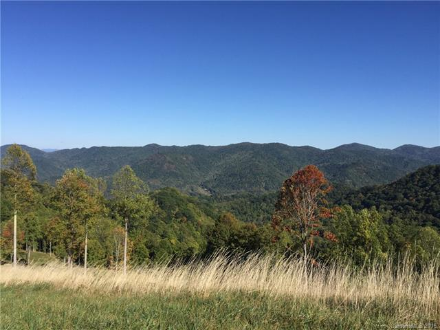 Image 10 for 00 Meadow Fork Road in Hot Springs, North Carolina 28743 - MLS# 3221579