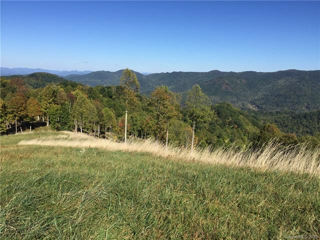 Image 11 for 00 Meadow Fork Road in Hot Springs, North Carolina 28743 - MLS# 3221579