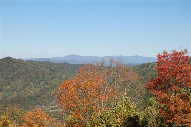 Image 13 for 00 Meadow Fork Road in Hot Springs, North Carolina 28743 - MLS# 3221579