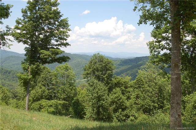 Image 15 for 00 Meadow Fork Road in Hot Springs, North Carolina 28743 - MLS# 3221579