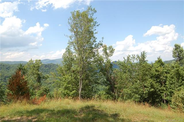 Image 18 for 00 Meadow Fork Road in Hot Springs, North Carolina 28743 - MLS# 3221579