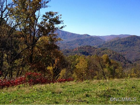 Image 2 for 999 Baltimore Branch Rd. in Hot Springs, North Carolina 28743 - MLS# 580813