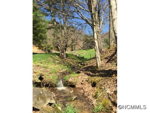 Image 5 for 999 Baltimore Branch Rd. in Hot Springs, North Carolina 28743 - MLS# 580813