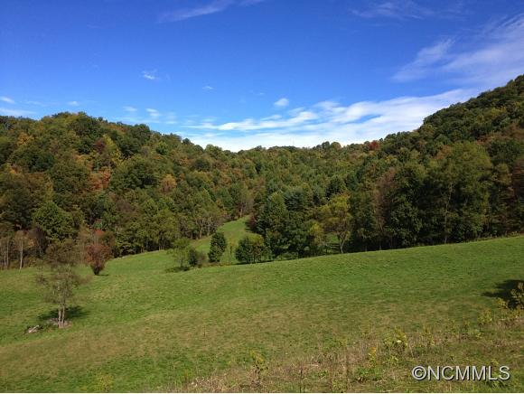 Image 17 for 999 Baltimore Branch Rd. in Hot Springs, North Carolina 28743 - MLS# 580813
