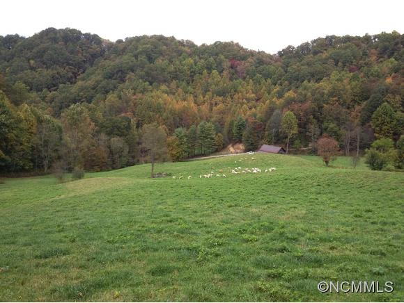 Image 20 for 999 Baltimore Branch Rd. in Hot Springs, North Carolina 28743 - MLS# 580813